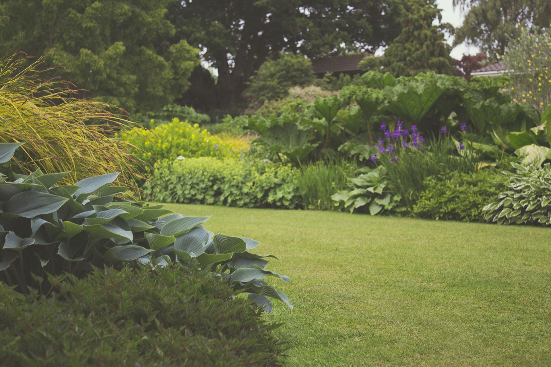 Tuin zomerklaar maken voorjaar